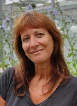 Caroline RAMBAUD